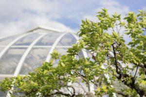 Kredit für einen Wintergarten